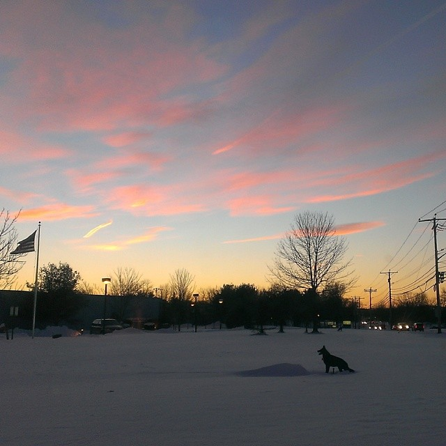 NJ sunset-January2014